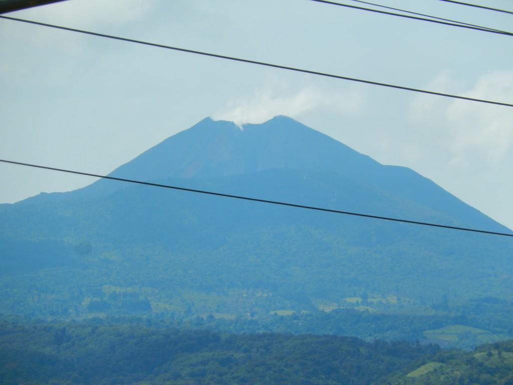 guatemala-pacifico_monterico1