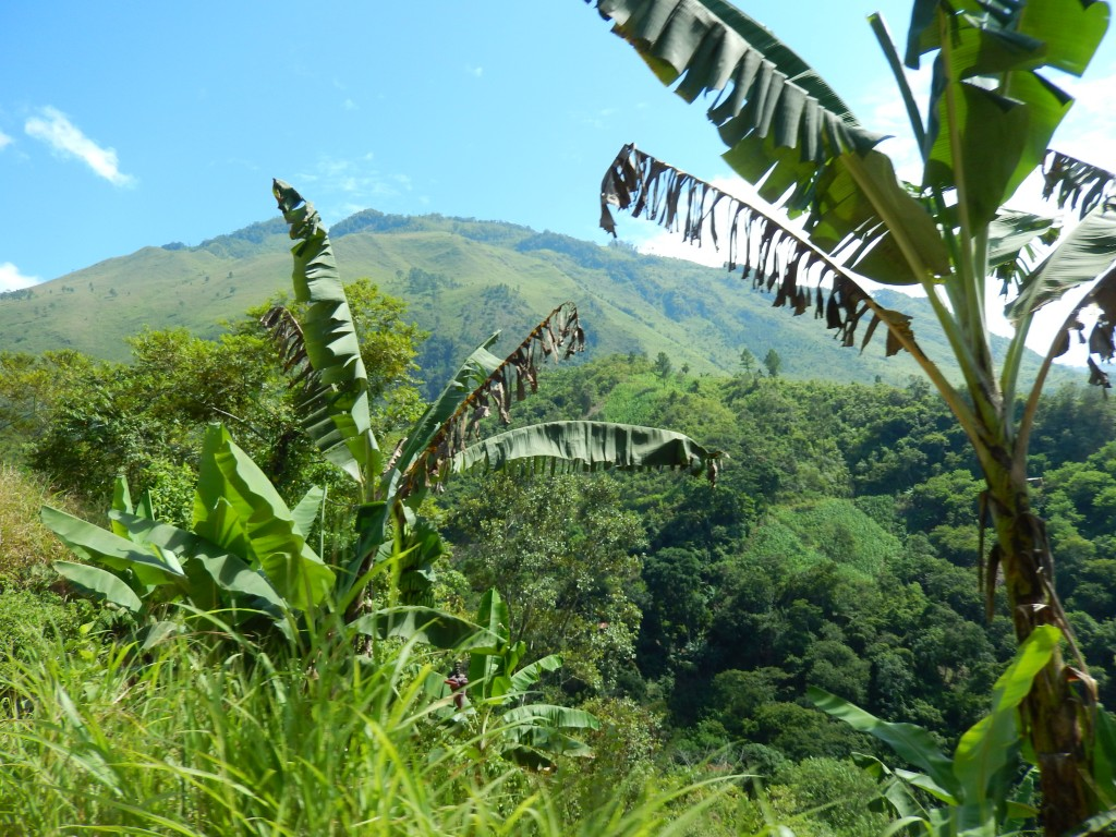 guatemala-verapaz_de_lanquin_a_cahabon31