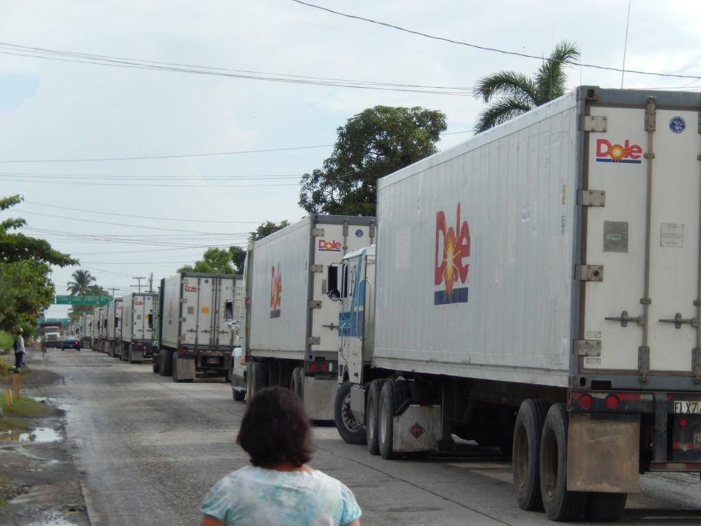 guatemala-atlantico_puerto_barrios7