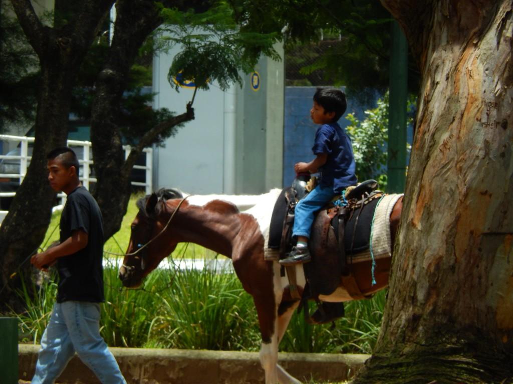 guatemala-guate50