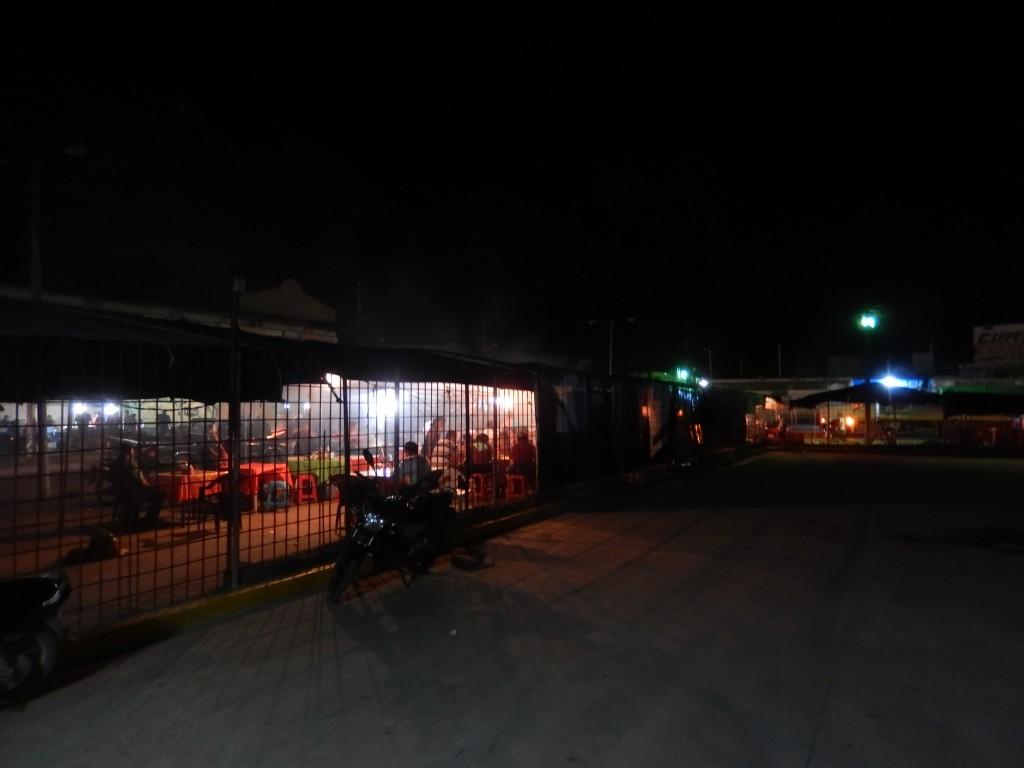 guatemala-tikal_flores12