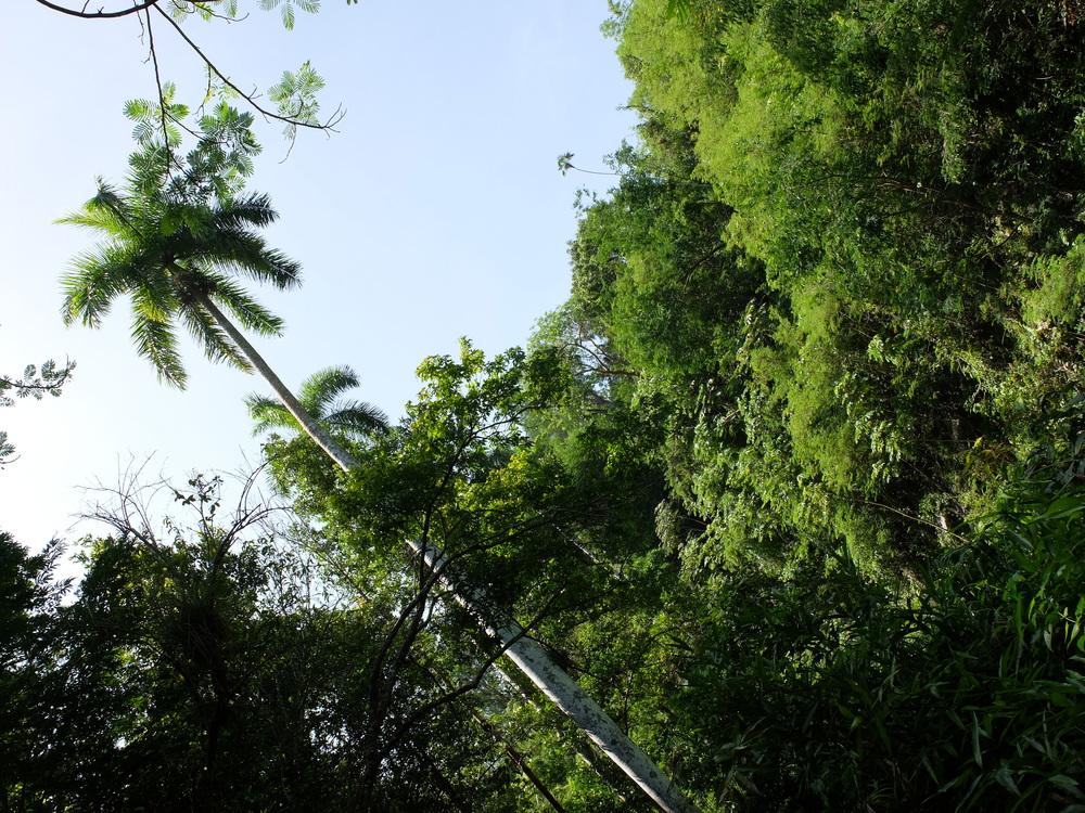 cuba2016trinidad-parque-el-cubanero7