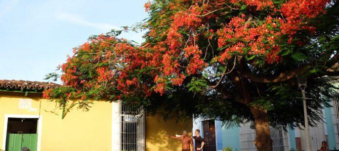 Cuba (5/5)