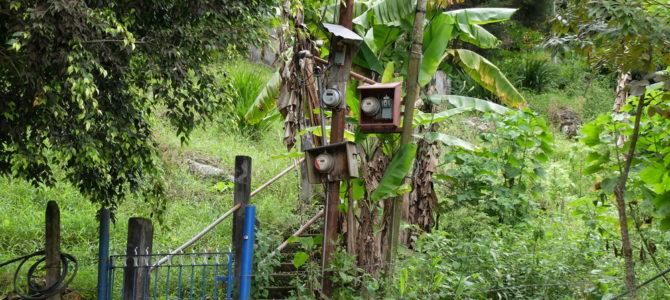 Costa Rica (1/3). 50 matices de verde-50 nuances de vert